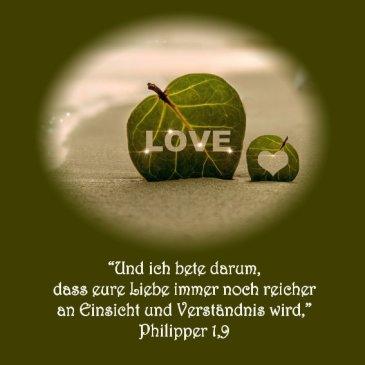 Heiraten Hochzeit Bibelvers Philipper 1/9