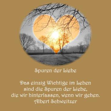 Heiraten Hochzeit Spruch der Woche Albert Schweitzer
