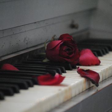 Heiraten Hochzeit - Musik verbindet