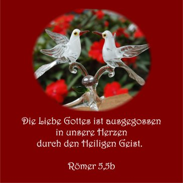 Heiraten und Hochzeit - Bibelvers der Woche, Römer 5,5b